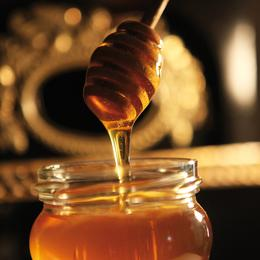 Image: 18th Day of Bear, Honey and Beekeepers